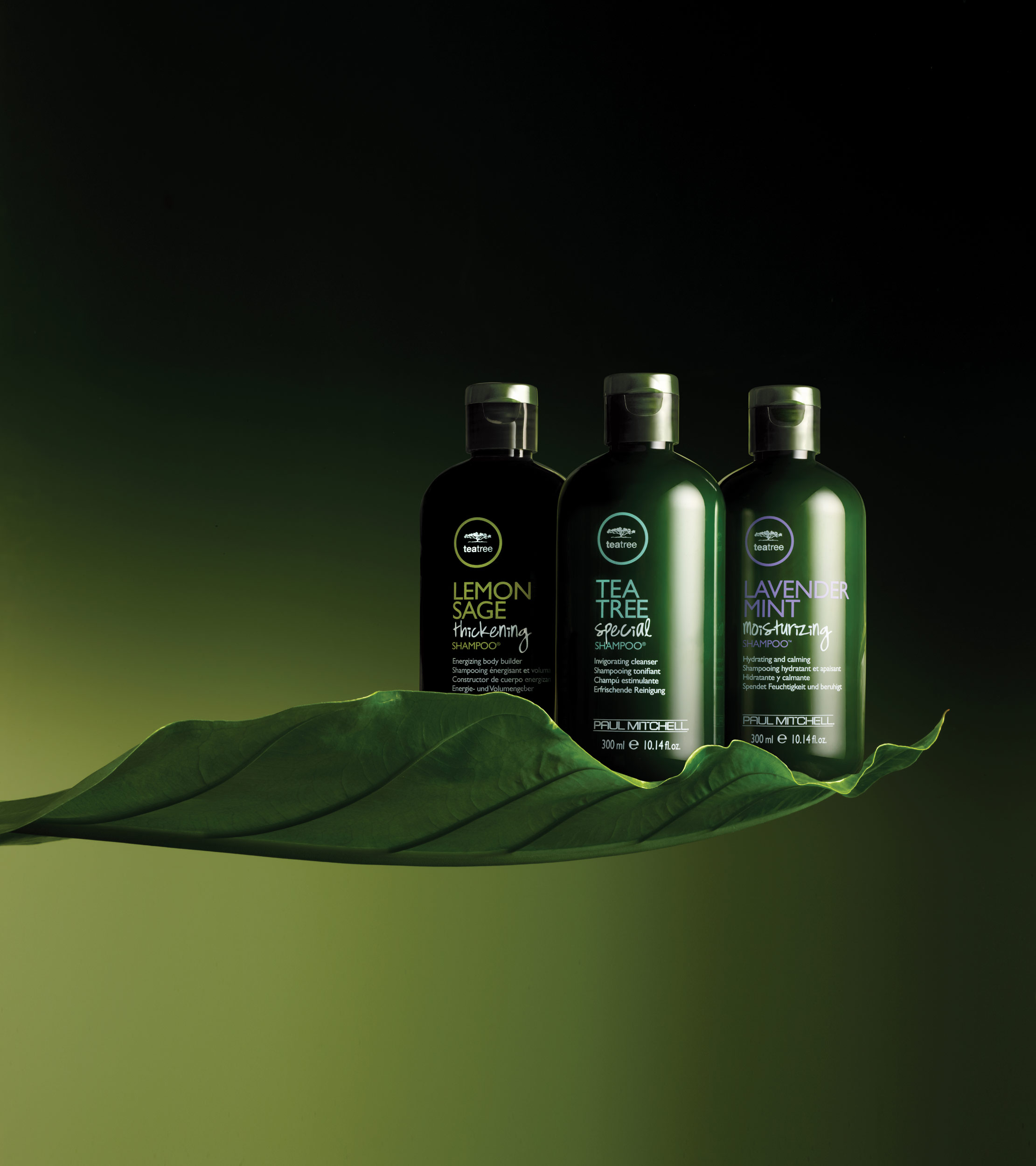 Tea Tree Scalp Care is a preventative system that gently and naturally helps slow down the process of hair thinning due to breakage.